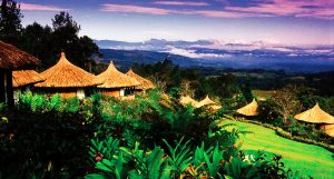 papua noua guinee, agentie de turism