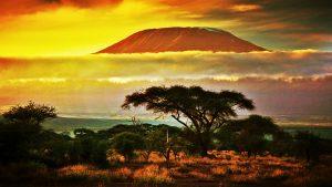 Tanzania, LOLO Tour, Agentie de turism Constanta