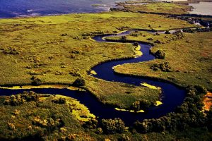 delta dunarii, agentie de turism